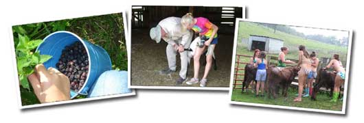 Berry-picking, at peak season, is a fun and yummy afternoon activity. Dr. Frank offers an afternoon activity with a vet emphasis. For the camper wanting to explore a non-traditional vocational path. Giving the calves a bath before our Farm Show is both fun and refreshing.